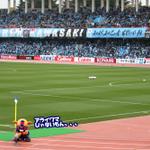 アライグマじゃないもん、、、 #fctokyo #東京ドロンパJマスコット総選挙 https://t.co/lNSi2vkTEI