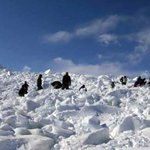 Siachen avalanche: armys rescue operation in pictures https://t.co/GLnNJ50lVh https://t.co/pL0g4K8mbg