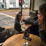Британский паб The Bag Of Nails — рай для любителей пива и кошек Часть 2 https://t.co/BaW7KU2U8S