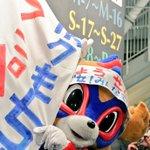 早く寝なきゃ風邪ひくよって親に注意されたけど、今日のドロンパの写真を選ぶのに時間がかかって寝れない???? 今日もかわいかったです! #東京ドロンパJマスコット総選挙 https://t.co/23nKCsjItO