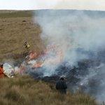 MAE y bomberos controlan incendio cerca de la reserva ecológica Antisana. ▶ https://t.co/PE63NXR5P0 #Ecuador https://t.co/DjL85rST2I