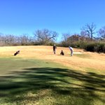 Perfect day for golf in BCS! @Traditionsgolf is in great shape! #firm&fast #AggieGolf #12thMan https://t.co/OXyW2g3fGb