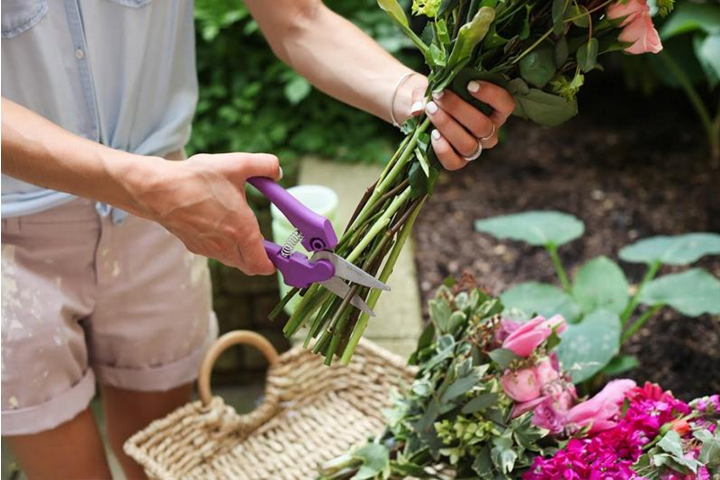When cutting flowers, measure properly and angle the shears at a 45-degree angle to make a clean slice https://t.co/mlV2mC7QJI