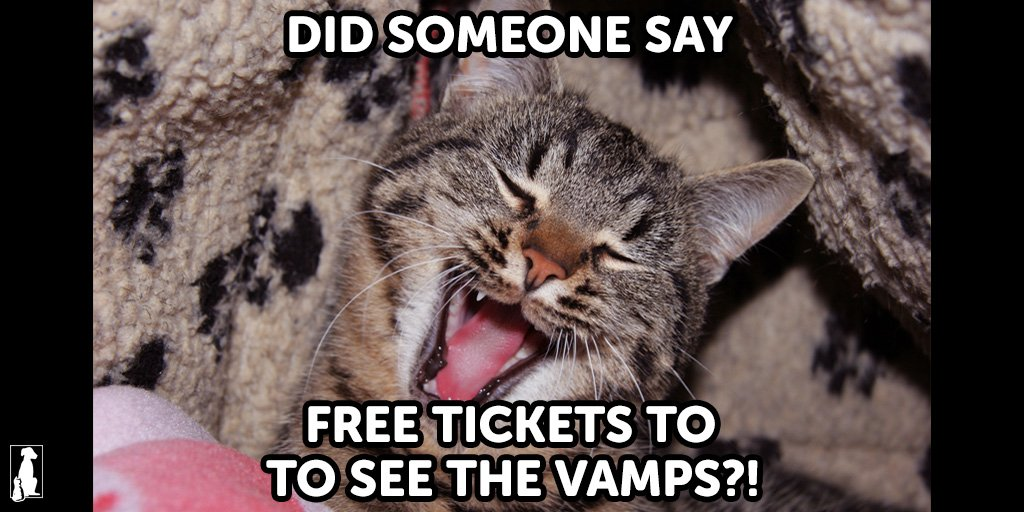 Win 4 @TheVampsband tickets by tweeting us your own #VamPet animal meme https://t.co/6zYwRS5o0w #TheVamps https://t.co/LAcKFAKwkt