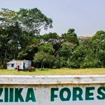 Near the Zika forest, few new cases of #ZikaVirus https://t.co/SQf5gQ5g5L https://t.co/YF86HSY2z5