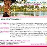 Junta de vecinos invita a celebrar semana Collicana en #valdiviacl https://t.co/lZev7C9S1Z