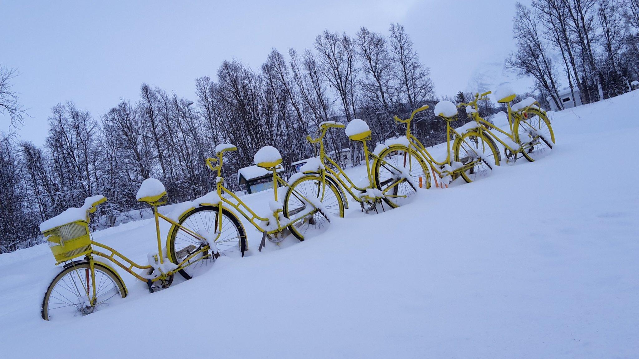 Biciclette in #Norvegia...in attesa di tempi migliori! Siamo a Siovegan a -7 gradi... #viaggiare #neve https://t.co/zcRlSZE8Jh