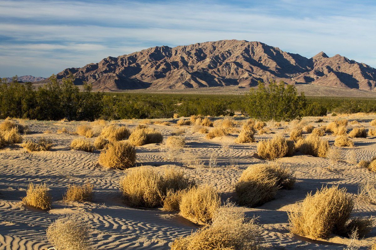 RT @SenFeinstein: Mojave Trails Nat'l Monument, on both sides of historic Route 66, has majestic mountains & valleys. #ProtectCADesert http…