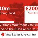 We send £20 billion a year to Brussels. After we #VoteLeave we can spend this money on our priorities #SaveOurNHS https://t.co/WbAxLodBoE