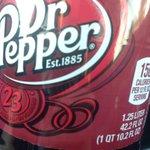 RT if you think @drpepper should follow Sock Cop! #SockLovesPeppas https://t.co/yNytvX9z51