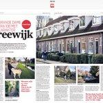 Vreewijk viert haar eeuwfeest in stijl als grand dame: parel op Rotterdam Zuid @RDStad https://t.co/C5PuavDw2F