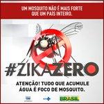 Nação Rubro-Negra x Mosquito = vitória fácil! Vamos juntos lutar pela nossa saúde! #ZikaZero https://t.co/10dtbnv59J