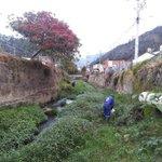 En @Pamplona_NdS se adelantan jornadas de limpieza a nuestro río Pamplonita https://t.co/QKnbrzNB8M