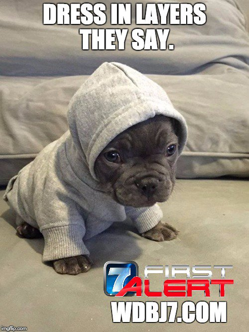 Bundle up, little pup. Remember pets feel wind chill too. https://t.co/XTWhDigog8