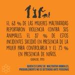 Quien es capaz de maltratar animales, probablemente no se detendrá ante personas. #AlertaConLaViolencia https://t.co/tTdXRjrTwM