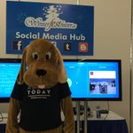 Come check out the social media hub @Winterfesthiver https://t.co/OeUrlcHV5h