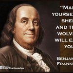 MT @1Lilybug: Make yourself sheep and the wolves will eat you! #FF1776 #COSProject #PJNET https://t.co/34D6Rb0IQA