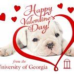 We love our students, faculty, staff, alumni, friends & family! ❤️🐾 https://t.co/KVgaFAya4e