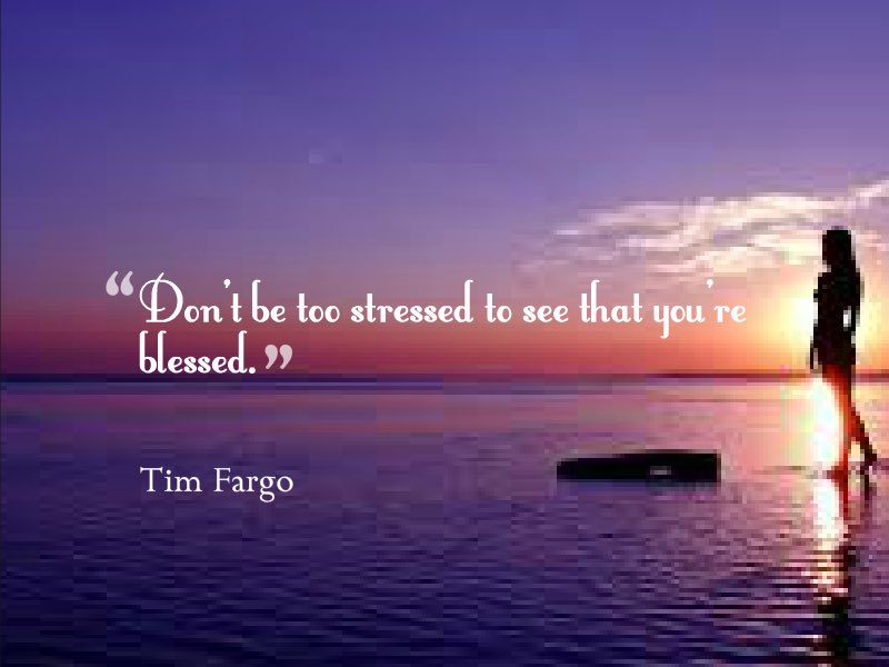 """Don't be too stressed to see that you're blessed."" - Tim Fargo #MondayMotivation  @alphabetsuccess @LowRavZo https://t.co/78J0s1hpET"