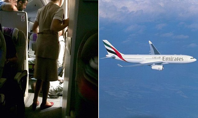 Emirates passenger who 'launched a mid-air attack' is arrested at Heathrow
