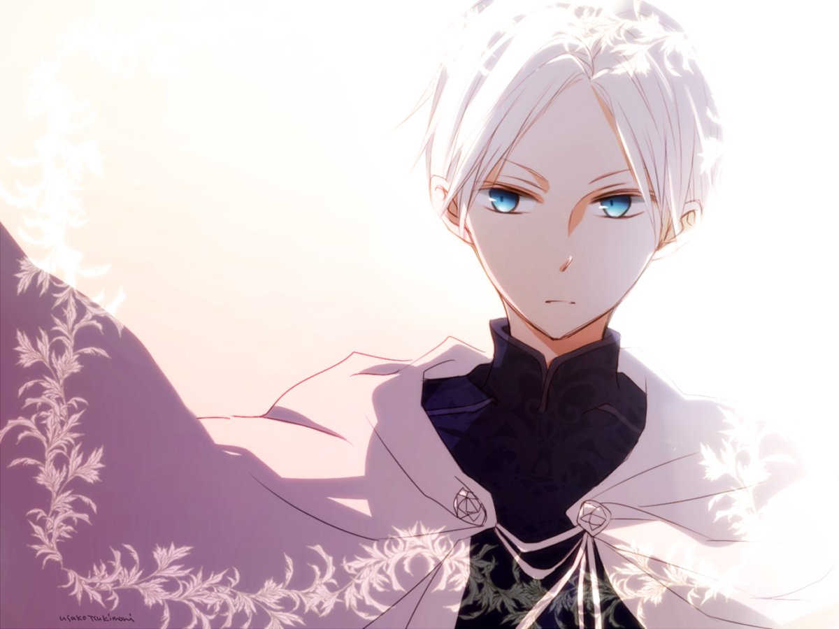 赤髪の白雪姫ゼン王子ゼンのセンター分け、アニメでは見れないかなぁ…