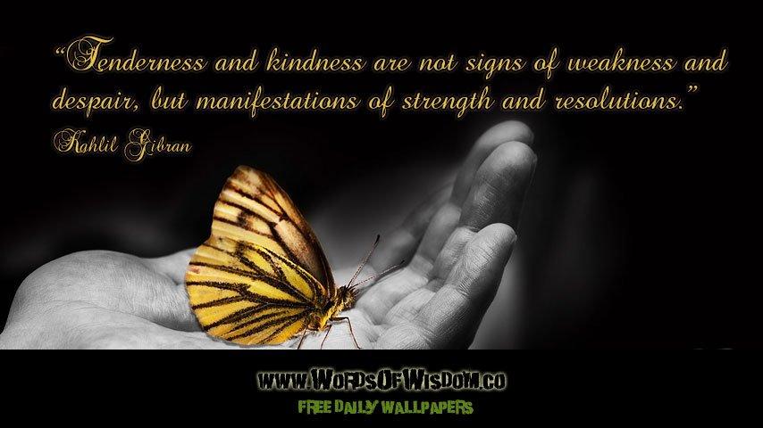Kindness is NOT a weakness! #IAmChoosingLove #JoyTrain https://t.co/qoGiJhKMGY