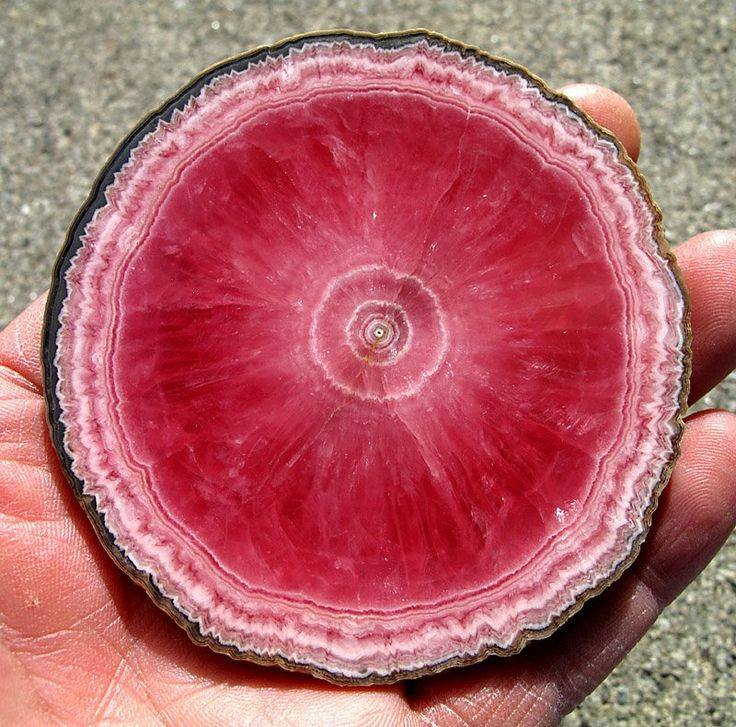 A cross-section of a rhodochrosite stalagtite. https://t.co/anXfoWYrOn