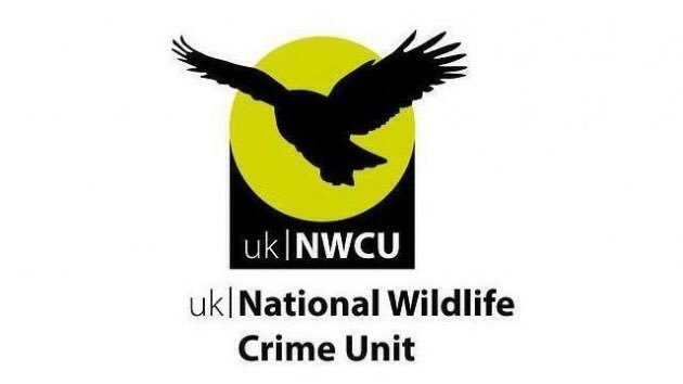 It's a great shame we're even having to post this. Save the National Wildlife Crime Unit: https://t.co/VRjYNIFrQv https://t.co/Yejv6UIyYy