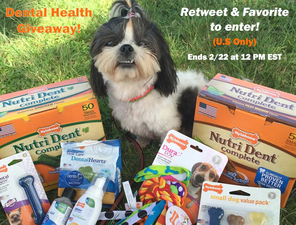 For #PetDentalHealthMonth we're giving away $50 of Nutri Dent & Advanced Oral Care! 3 winners—RT & favorite 2 enter! https://t.co/Hsj7ZCutHZ