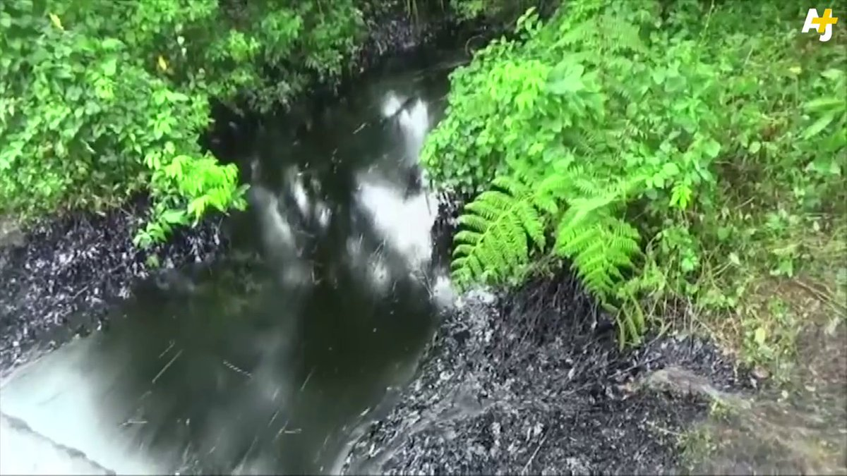 #TakeAction for PERU: CLEAN UP oil spills in the Amazon & support affected communities! https://t.co/OhlAfzgmGz https://t.co/A24u603ELy