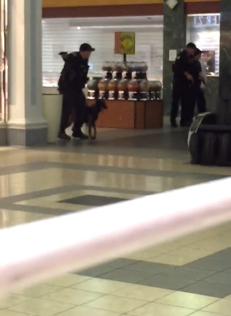 Photos from family trapped in Columbiana Mall following a reported shooting https://t.co/r4TZN8ryR1