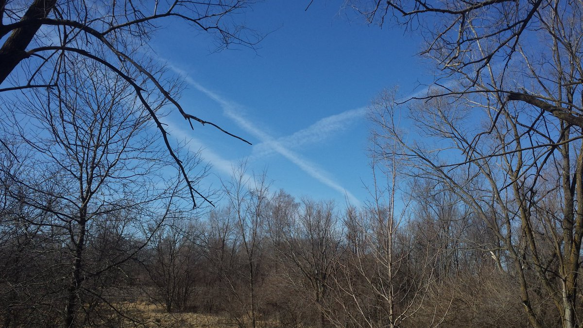 Tic tack toe the cat always wins .#opchemtrails #chemtrails https://t.co/A1WE0GLytR
