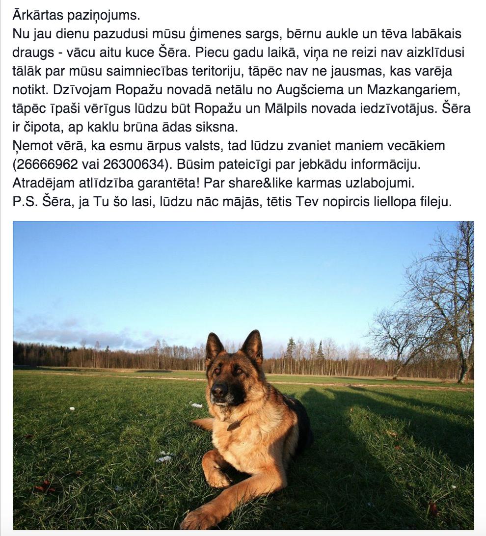 Pazudis mūsu suns. Lūgums palīdzēt ar vienkāršu RT. https://t.co/PnyoupTnrj