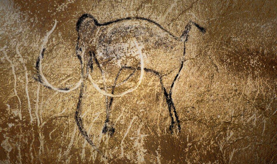 ショーヴェ洞窟の画像 p1_12