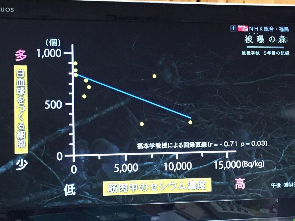 NHKが、あの日経新聞の「伝説の怪奇直線」に真っ向勝負したと話題に https://t.co/H4t5rXi7Qg https://t.co/GZ2W37qaRv