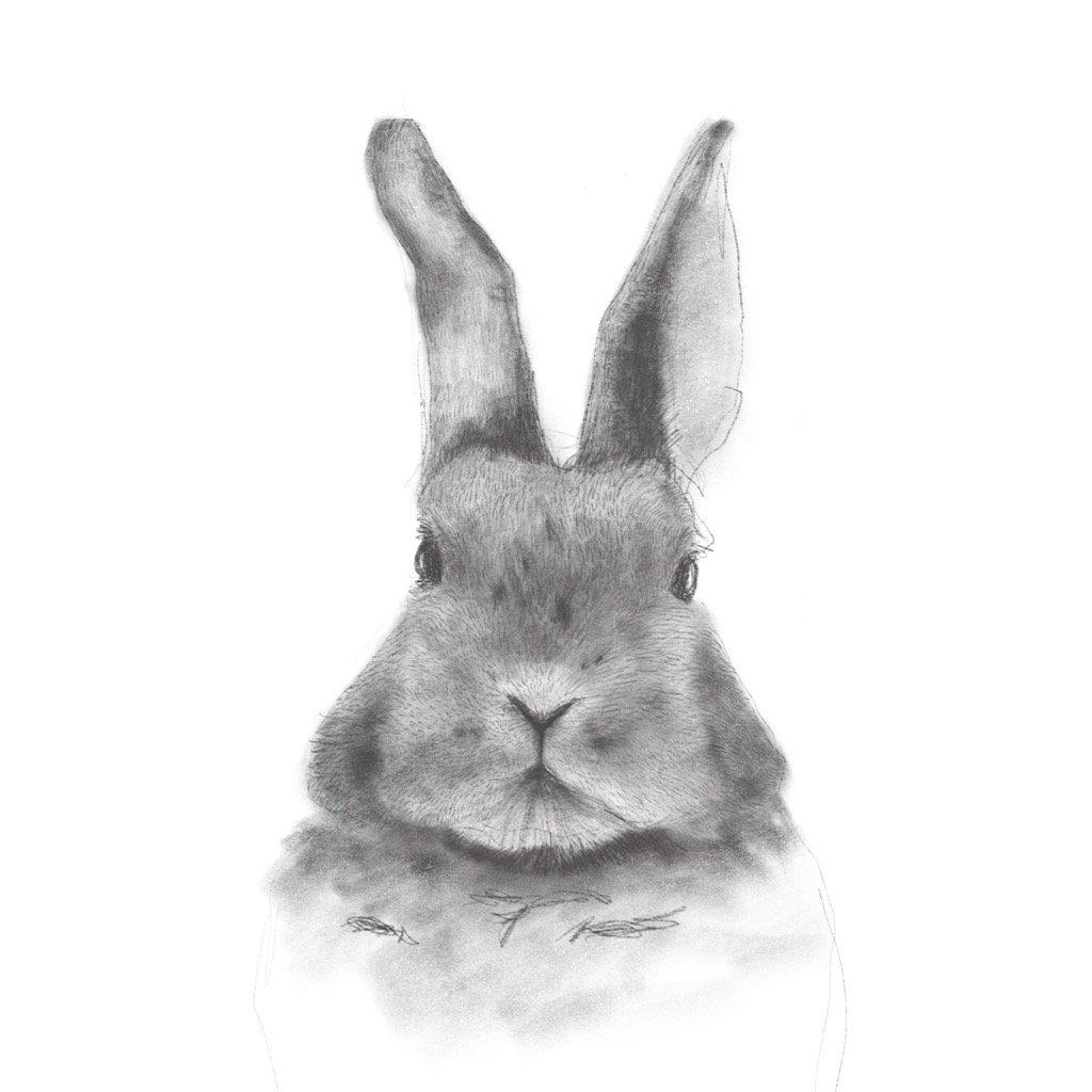 ウサギ #お絵描き apple pencil procreate https://t.co/XTbpVgpYEm
