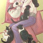 2(にゃー)2(にゃー)6(ムウゥォォォォオァアアア←威嚇の導入部で 今 日 も ま だ 【 猫 の 日 】(´ω`元ネ