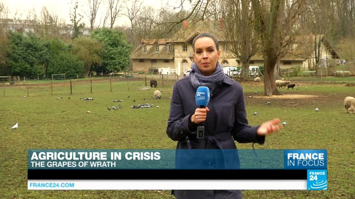 VIDEO -  Agriculture in crisis: The grapes of wrath