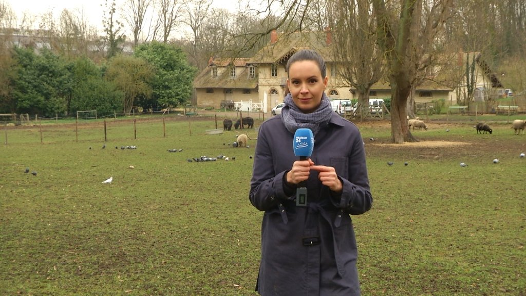 FRANCE IN FOCUS - Agriculture in crisis: The grapes of wrath