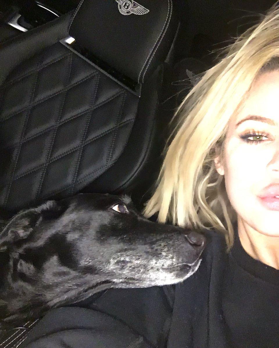 She won't even let me take a selfie ???? https://t.co/Nk9CO8J8Qk