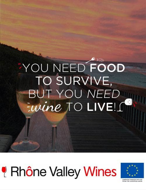 #Winelovers You need food to survive but you need wine to live @kacyturner1 @winewankers @BCfoodieblogger @RhoneWine https://t.co/cmoQWUoPiZ
