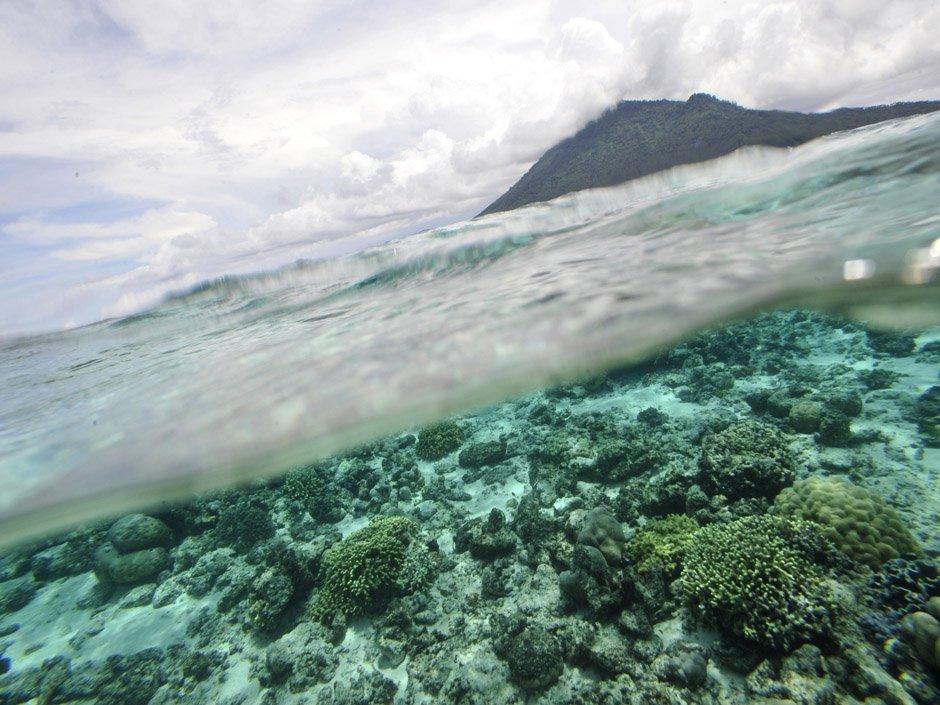 Indonesia earthquake: 7.9 magnitude quake off western coast triggers tsunami warning