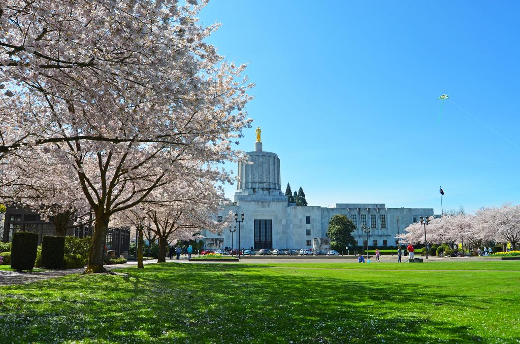Oregon lawmakers just passed a landmark bill to kill coal & double renewable energy https://t.co/OJlnmG172H #orleg https://t.co/0dZZCOURK7
