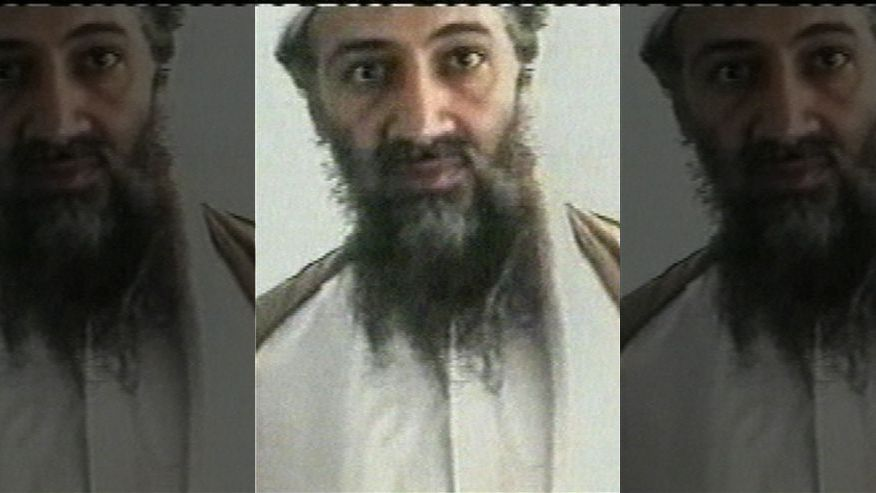 Usama bin Laden wanted America's youth to fight climate change