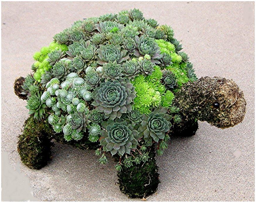多肉デコり用?のネルソルなんて土があるのか、ってググったらすごいの作ってる人おった。 ▶ 趣味の記事:多肉植物はアート!水で練って固まるネルソルが便利そう https://t.co/xFcImviZ04 https://t.co/vEOReEUF1M
