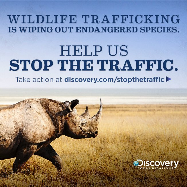 Join Discovery's/our fight to stop illegal wildlife trafficking. Take action now #StopWildlifeTraffic https://t.co/nFG2rIqSmG