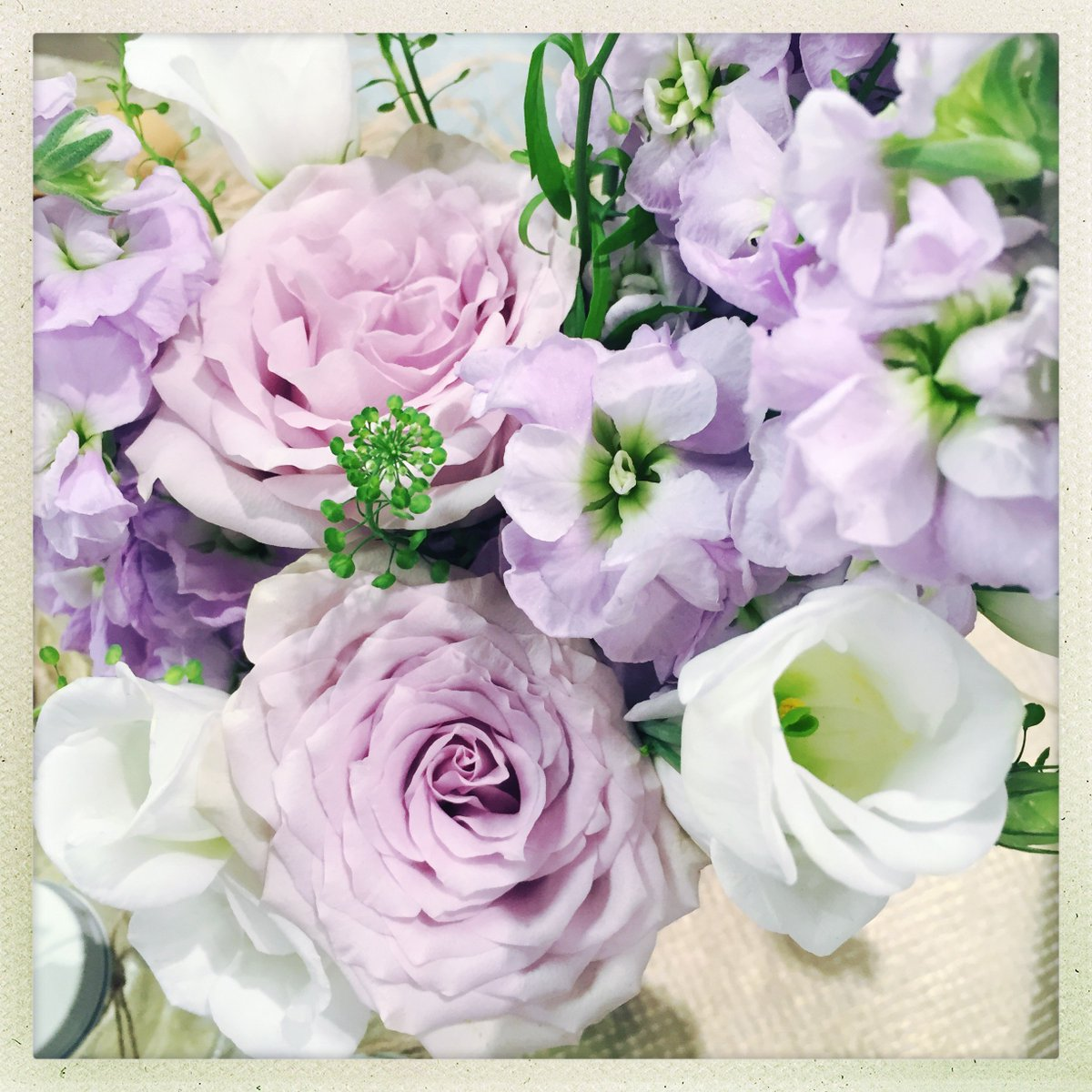 Who wants to win a beautiful bunch @BloomandWild flowers for Mother's Day? Follow us and RT to win! https://t.co/roFqNaSnMO