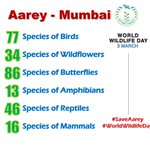 RT @saveaarey: Where will they go? Save their home #SaveAarey! RT Hope! @sachin_rt @swapsd @Riteishd @iTIGERSHROFF @shreyastalpade1 https:/…