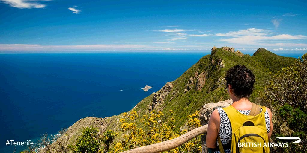 If you like quiet coves and marine wildlife spotting, try Tenerife's volcanic coastline.