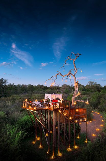 RT @SAA_UK: 11 tree houses where you can sleep amongst the stars in the African bush.